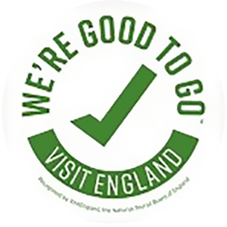 Covid - Good to go logo